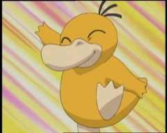 Here's to you, Psyduck.